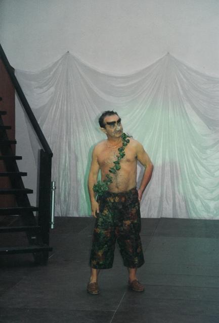 theaterverein-wetter-ein-sommernachtstraum-bild08