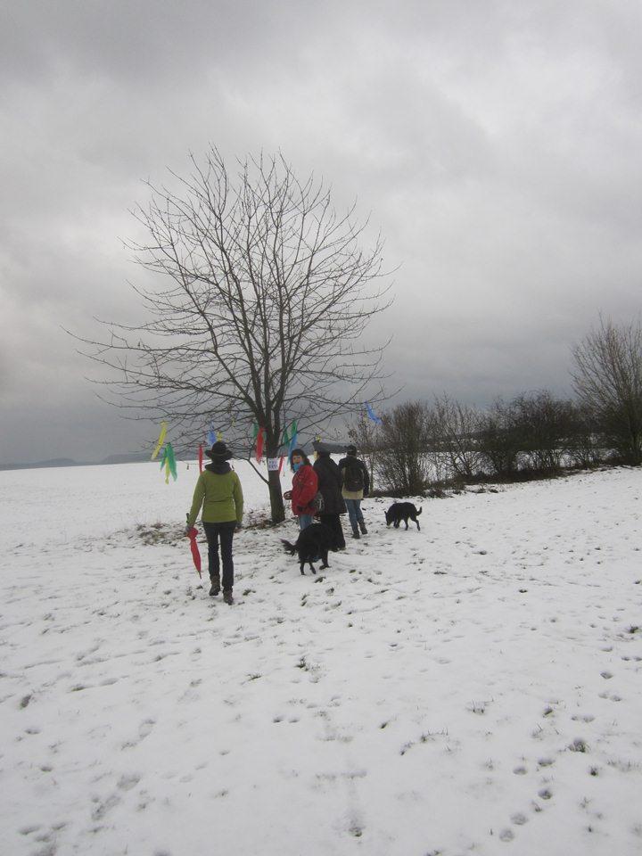 theaterverein-wetter-winterwanderung-2012-12